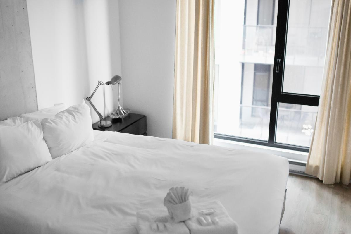Bed Bugs: Is landlord or tenant responsible